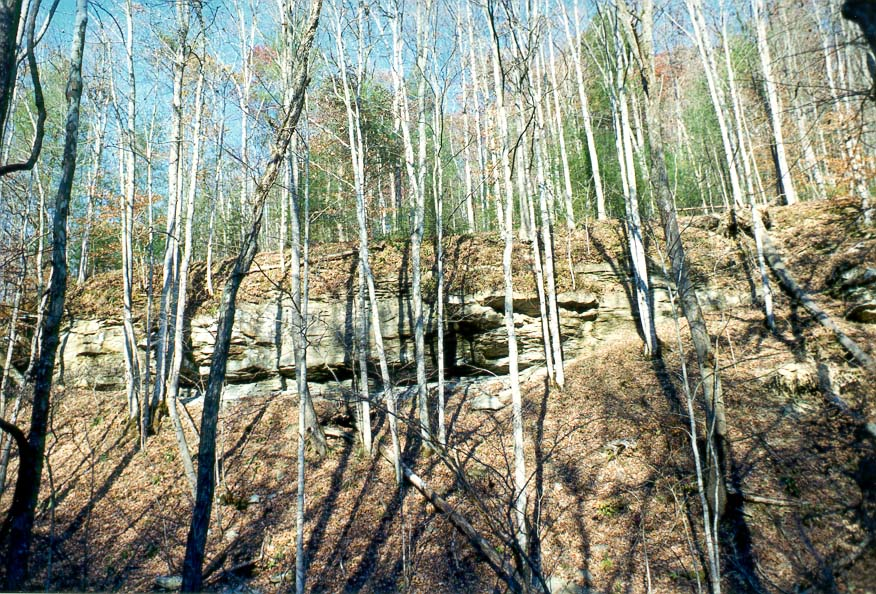 Limestone rocks, view from Sheltowee Trail near...Top Rock. Red River Gorge, Kentucky