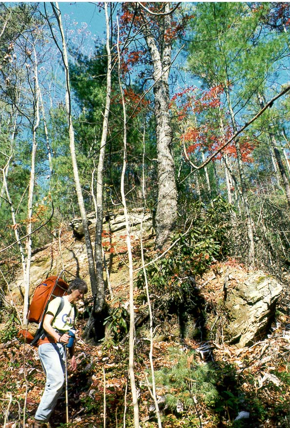 Red River Gorge KY-Lafayette IN  - Buck Trail. Red River Gorge, Kentucky