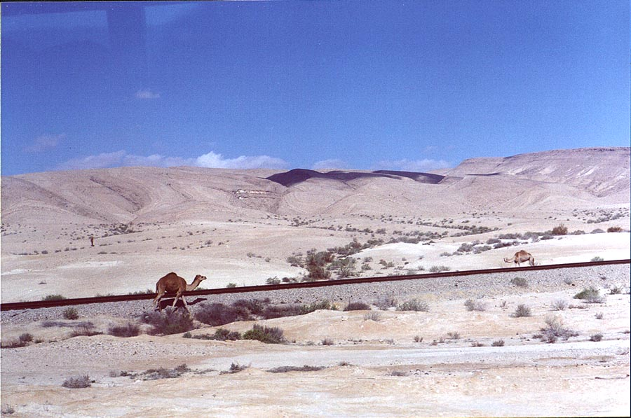 Negev Desert south from Dimona. The Middle East