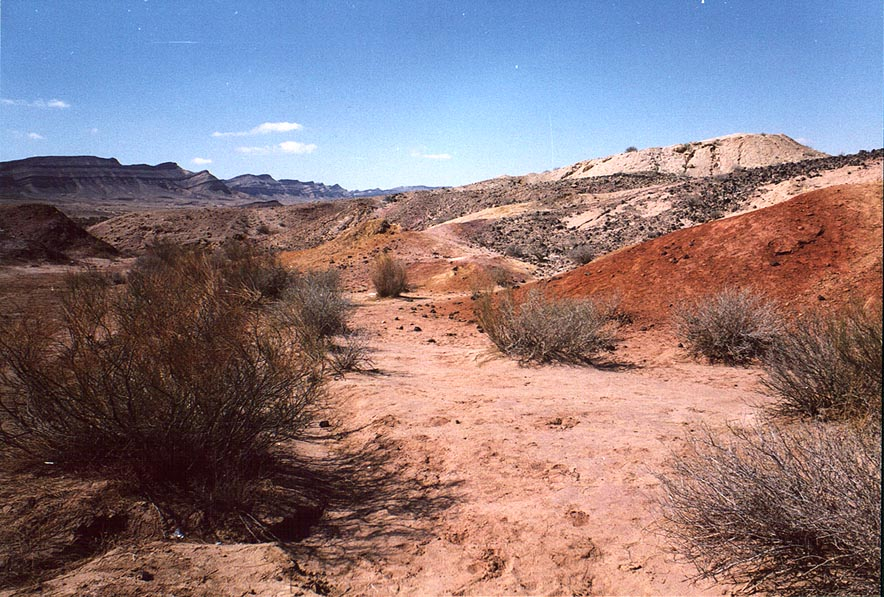 Dry creek in Big Crater (Makhtesh Gadol) in Negev Desert. The Middle East