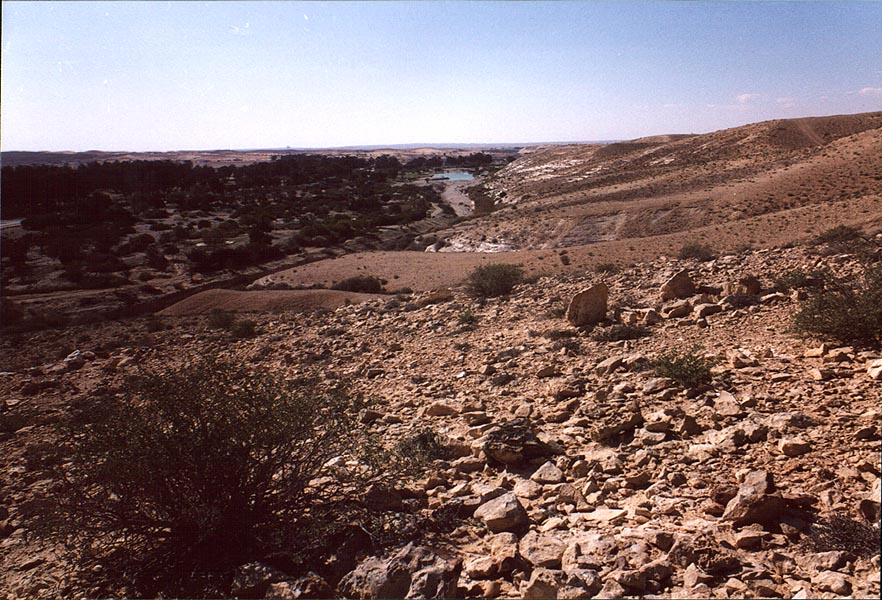 View of Golda Meir Park from hills. Negev Desert, The Middle East
