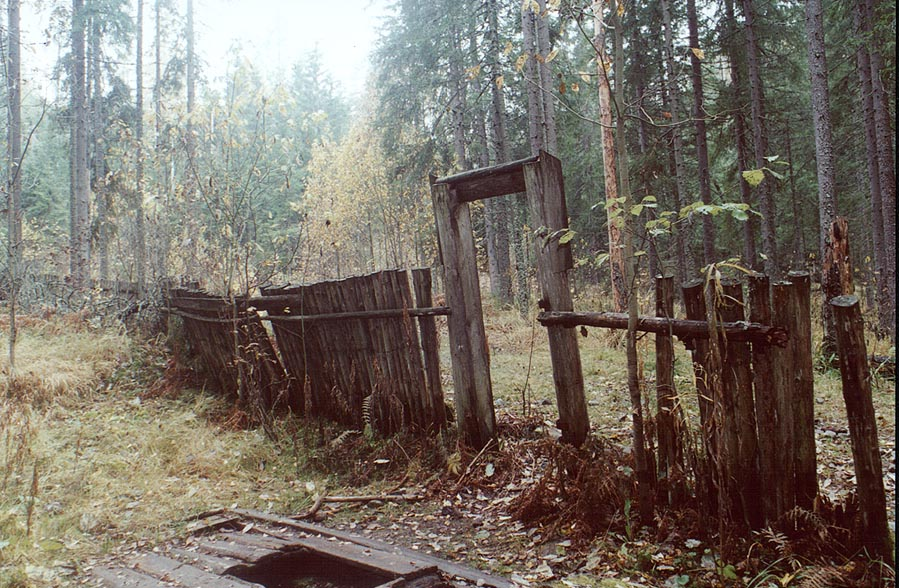 A spring at an abandoned Finnish farm in a forest...north from Sankt Petersburg. Russia