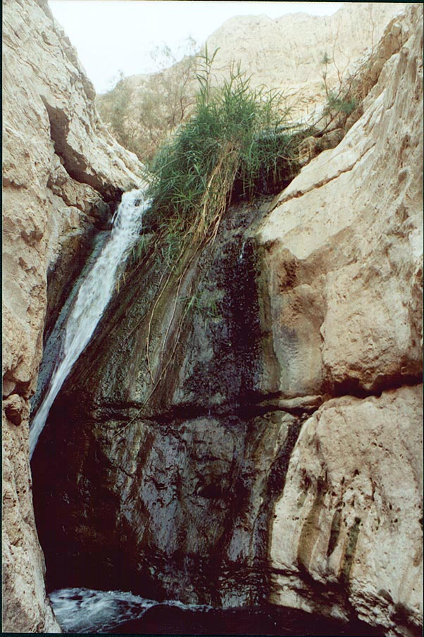A waterfall at a dead end of Upper Pools of Nahal Arugot. Ein Gedi, the Middle East
