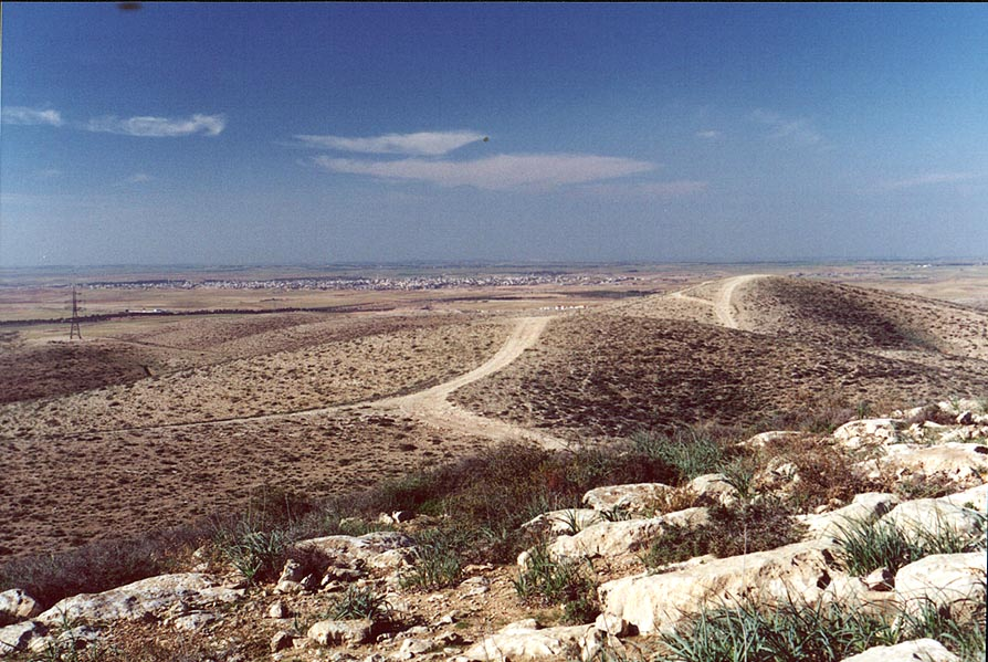 View of Bedouin Rahat city from hills of North...north from Beer-Sheva. The Middle East