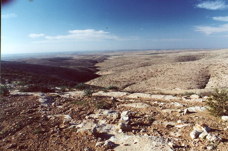 N. Lahav Nature Reserve, 4 miles north from Beer...from Mount Karkor . The Middle East