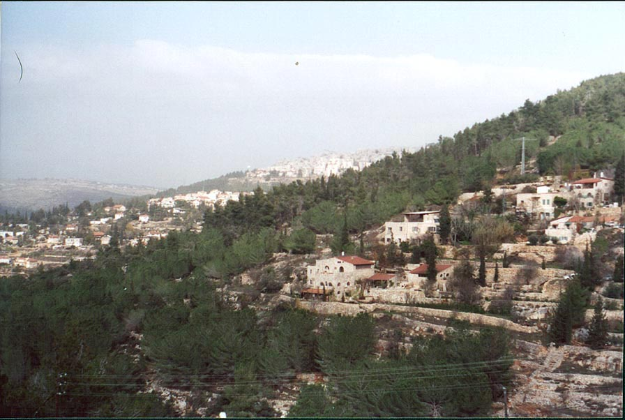 View of Sorek River from Rd. 395, west from...houses behind a hill). The Middle East