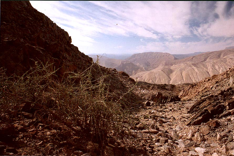 A dry riverbed on Egyptian border near Taba, 3...south-east from Eilat. The Middle East