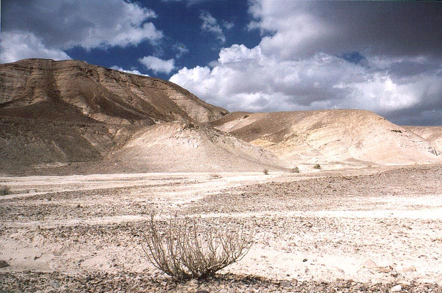 A desert plateau above Ein Bokek. The Middle East