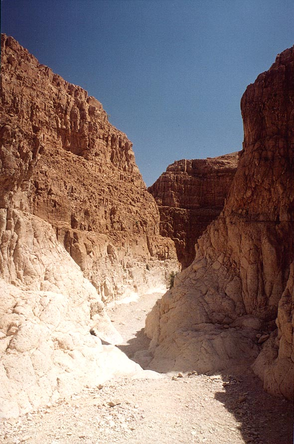 Middle part of the Dry Canyon in the upper Nahal David. Ein Gedi, the Middle East