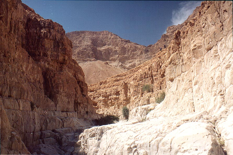 Near the beginning of the Dry Canyon in the upper Nahal David. Ein Gedi, the Middle East