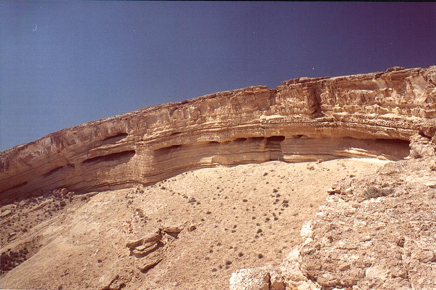 Horseshoe formation (a round tilted pit 200-250 m...east from Sde Boker. The Middle East