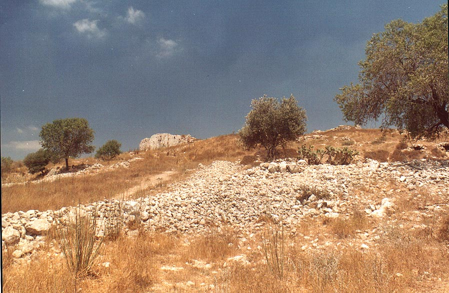 A hilltop with ruins of Bet Atab village, 4 miles east from Beit Shemesh. The Middle East