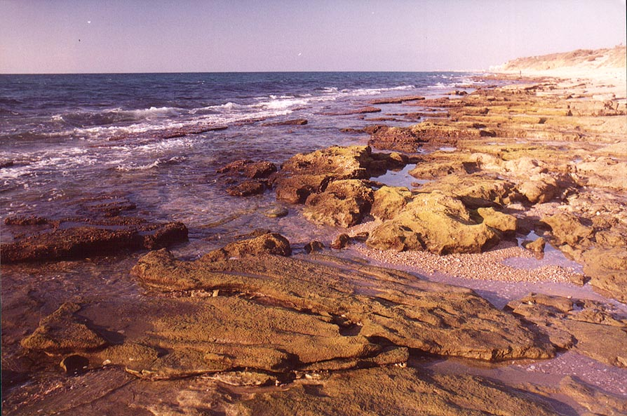 Beaches south from Ashkelon at evening. The Middle East