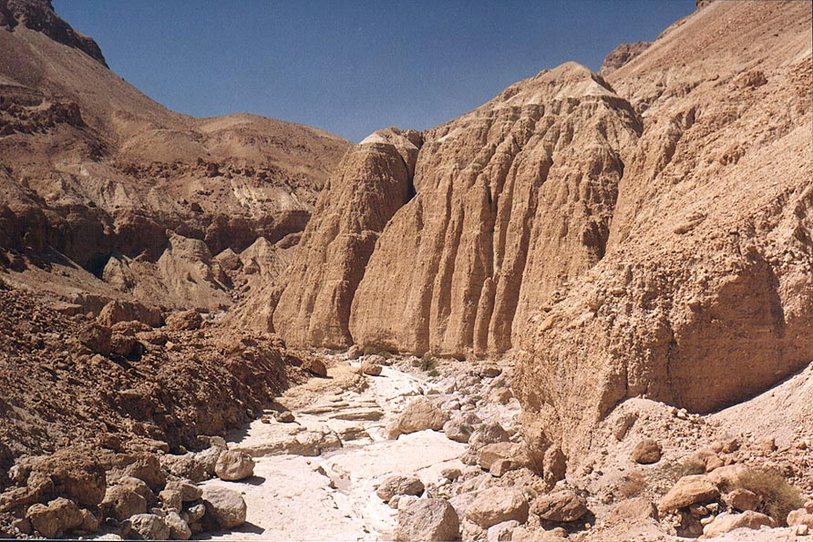 Lower Tseelim Canyon, 3 miles north from Masada, near Dead Sea. The Middle East