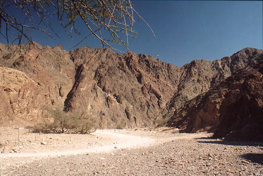 A road along Nahal Netafim Creek, 2 miles north-west from Eilat. The Middle East
