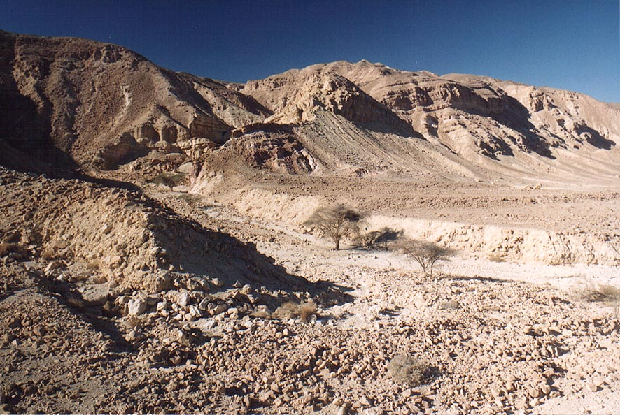 Landscape of Roded Valley, 4 miles north-west from Eilat. The Middle East