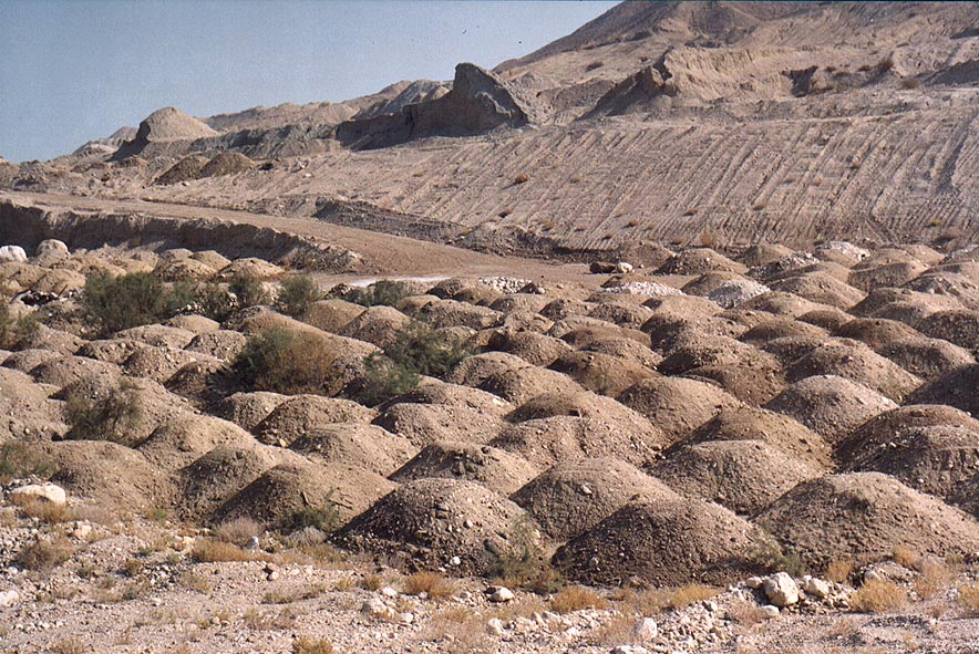 A dumping ground at Emek Zahar marsh north from Mount Sdom. The Middle East