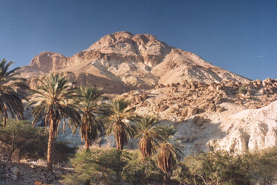 View at the entrance to Ein Gedi park. The Middle East