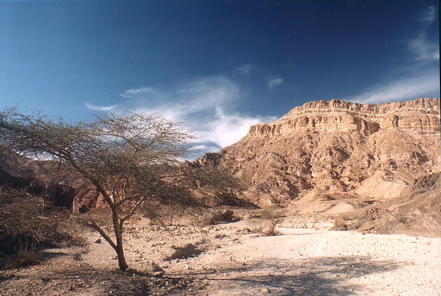 Nahal Roded wadi with Mount Shehoret at...north-west from Eilat. The Middle East