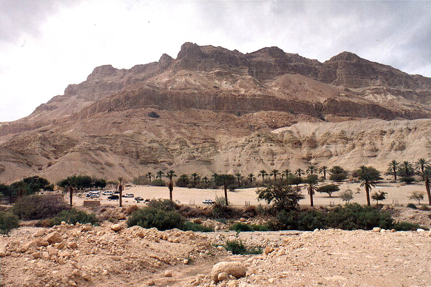 Entrance to Ein Gedi park, from the side of Nahal Arugot river. The Middle East