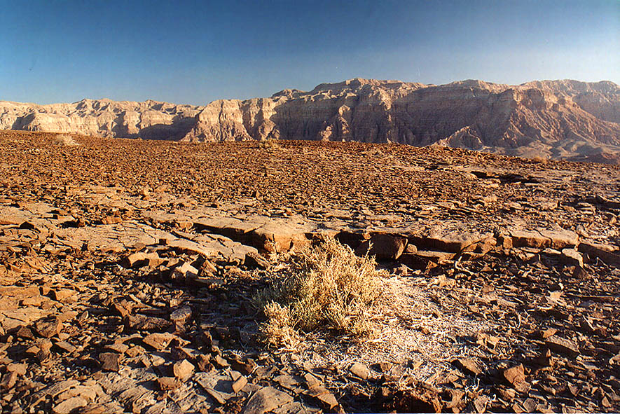 Surface of the flat tabletop of Mount Timna...north from Eilat, the Middle East