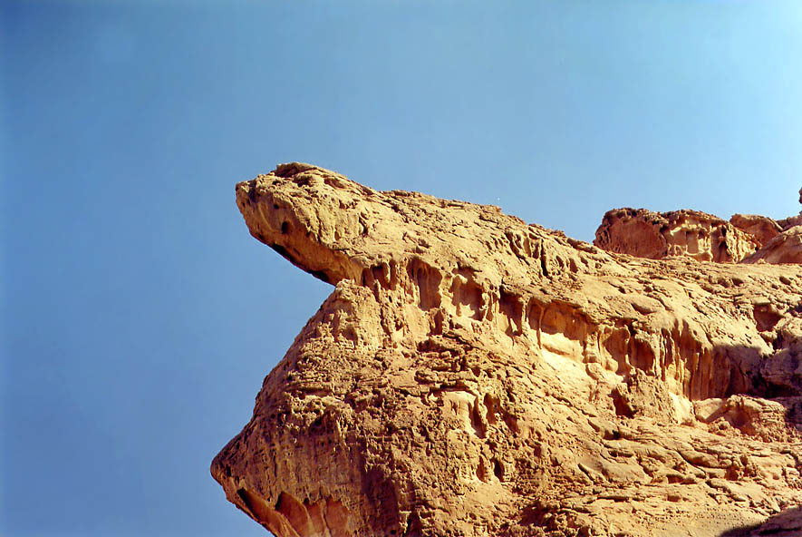 Lizard-like sandstone formation over Solomon...north from Eilat, the Middle East