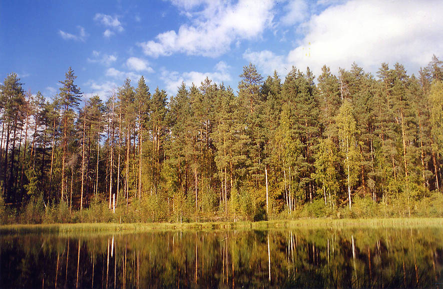 A lake in Petiyarvi in Karelian Isthmus 45 miles north from St.Petersburg, Russia