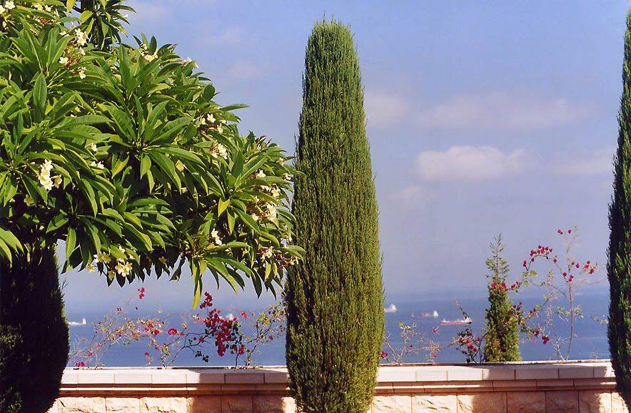 Terrace of Bahai Temple on Mount Carmel in Haifa. The Middle East