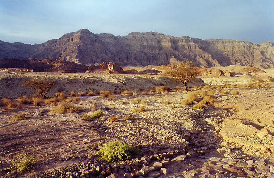 View of Timna wadi and cliffs from a road to the...north from Eilat. The Middle East
