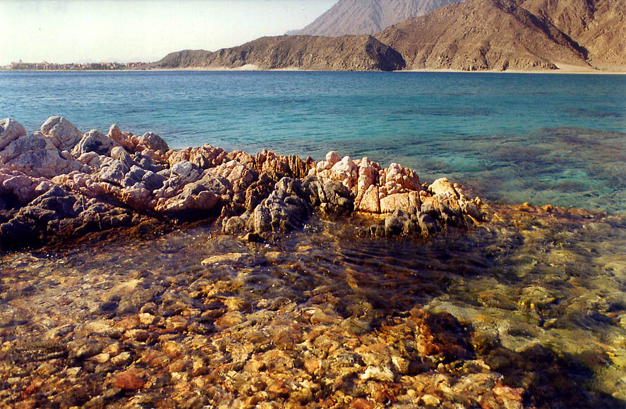 Coral reefs of Gulf of Akaba in Sinai south from Marsa Murah fjord. Egypt