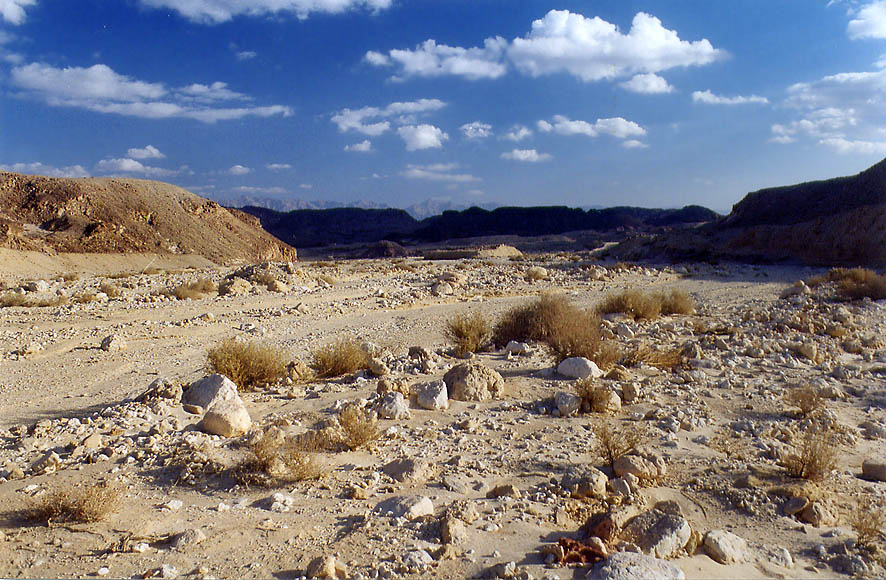 A wadi in western Timna Park, 13 miles north from Eilat. The Middle East