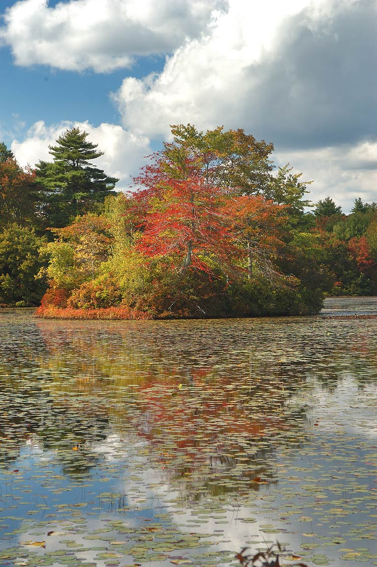 Leach Pond in Borderland State Park. Massachusetts