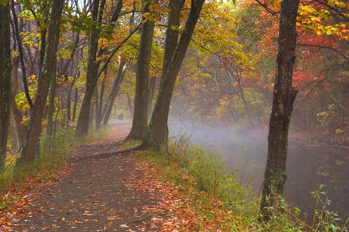 The towpath of Blackstone Canal in fog south-east...State Park. Uxbridge, Massachusetts