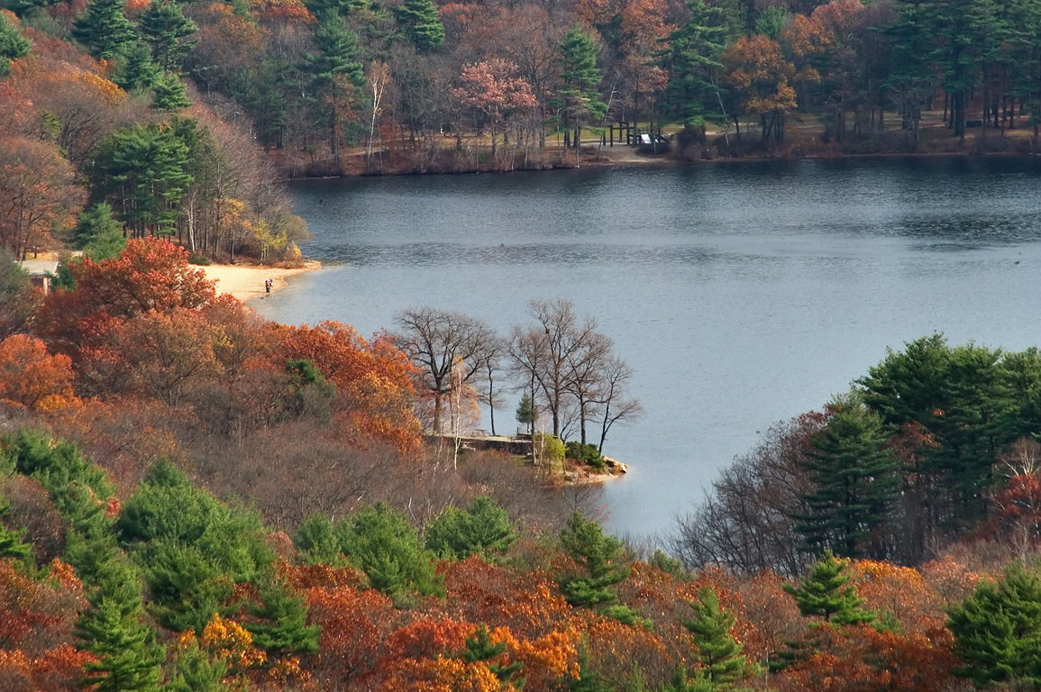 Houghtons Pond, view from an observatory on the...Reservation. Boston, Massachusetts