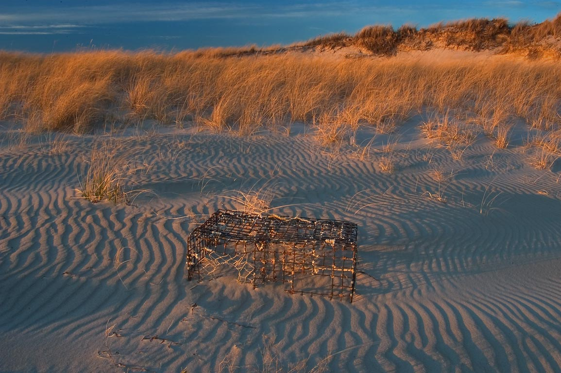 A lobster pot, sand ripples and beach grass at...Beach. Westport, Massachusetts