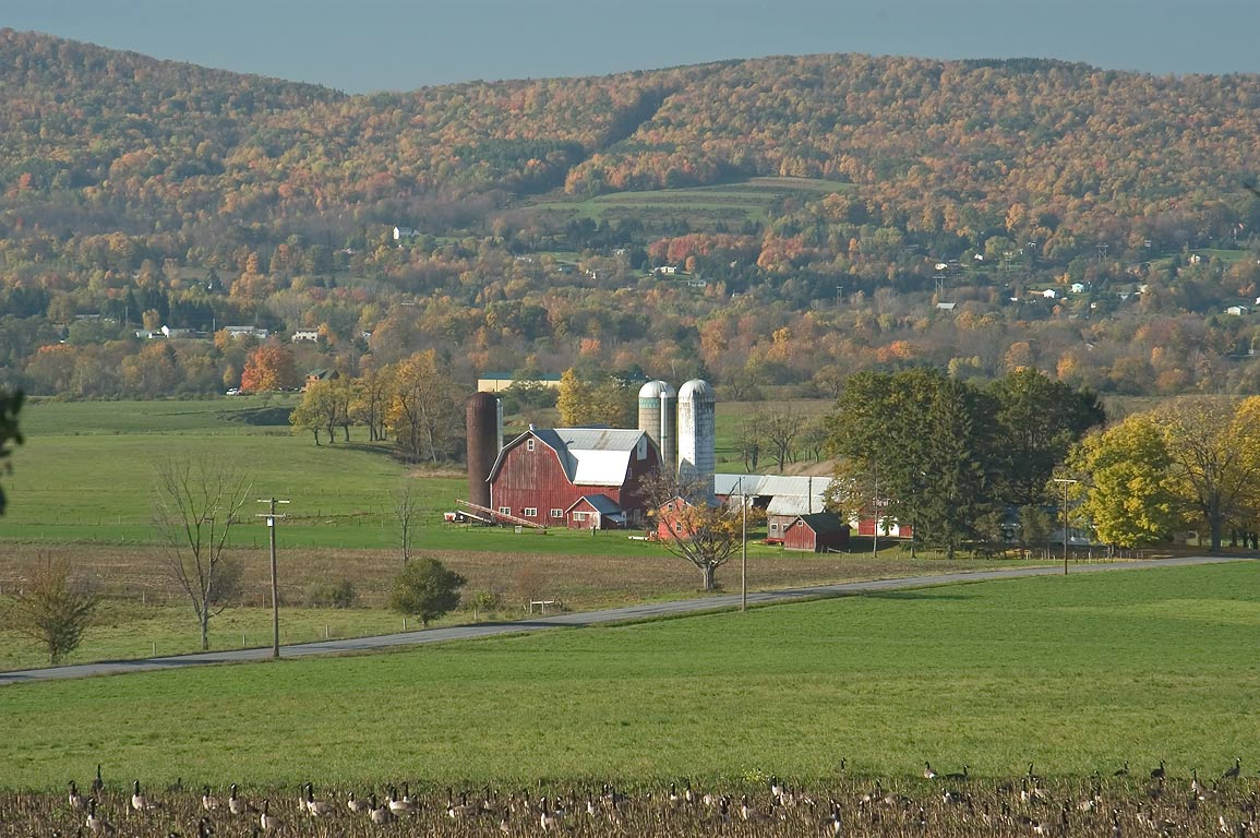 A farm near Van Donsel Rd., view from Rd. 392. Dryden, New York