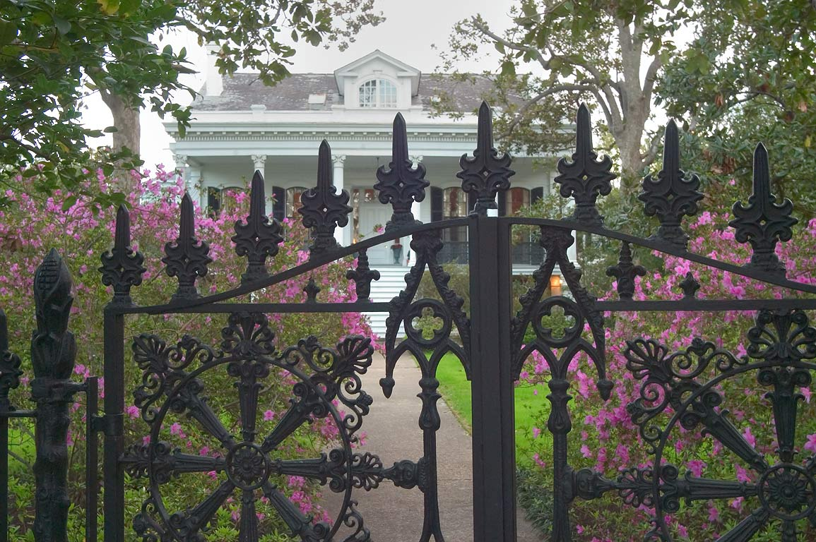 Ironwork and blooming azaleas in front of...Eleonore St.. New Orleans, Louisiana