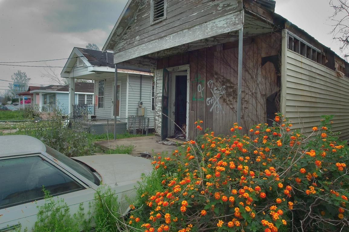 Blooming garden on Gen. Pershing St. near Highway...Parish. Eastern New Orleans, Louisiana