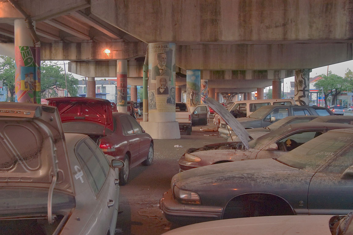 Rows of abandoned cars with painted images on the...at evening. New Orleans, Louisiana