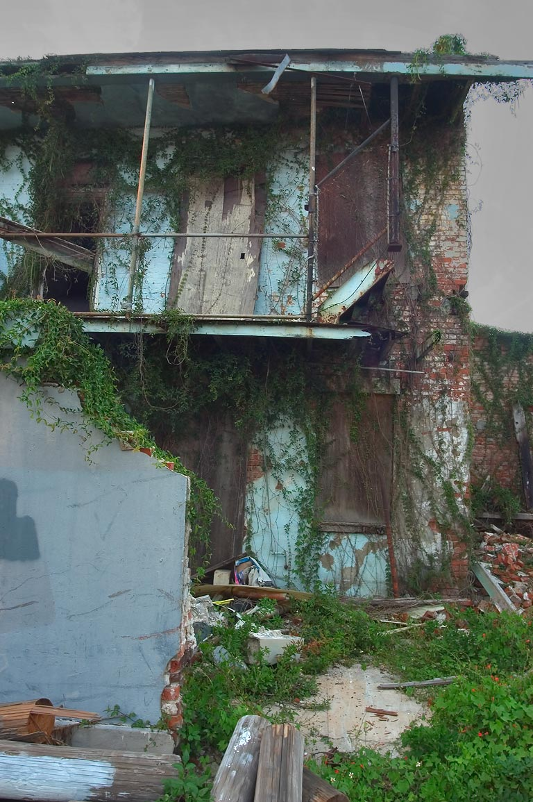 A ruin on Terpsichore St. near Constance St. in...District. New Orleans, Louisiana