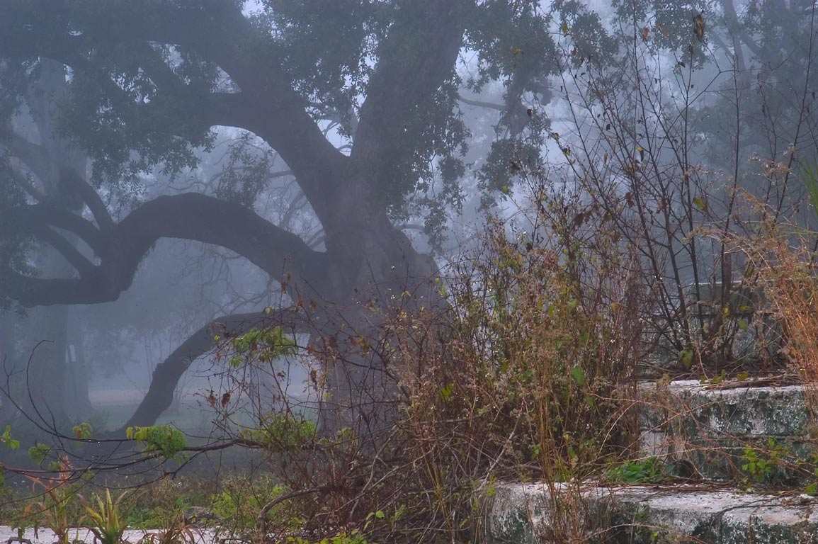 Remains of Spray Park near Dreyfous Dr. and...Park in fog. New Orleans, Louisiana