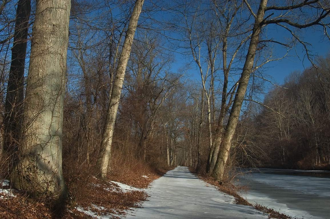 Snow on a towpath in Delaware and Raritan Canal State Park. Kingston, New Jersey