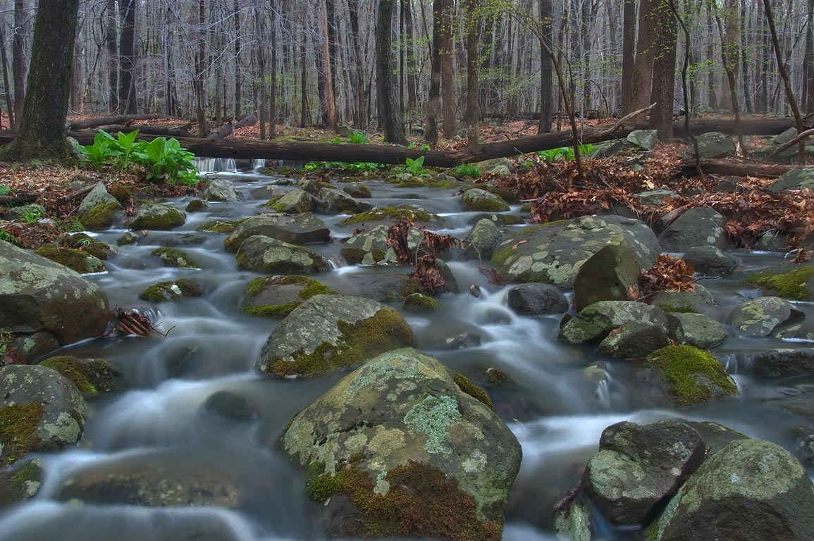 A creek on boulder field in John Witherspoon Woods park. Princeton, New Jersey
