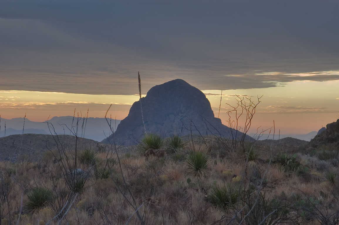 Elephant Tusk Rock, view from Fresno Spring near...Trail. Big Bend National Park, Texas