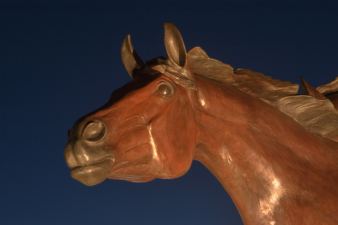 "Bronze horse of the statue ""The Day the Wall Came...Library Center. College Station, Texas"
