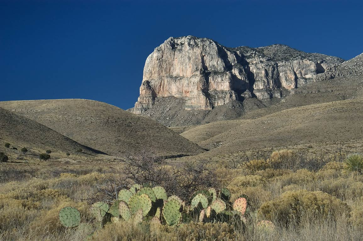 El Capitan Mountain with prickly pears cactus in...Mountains National Park, Texas