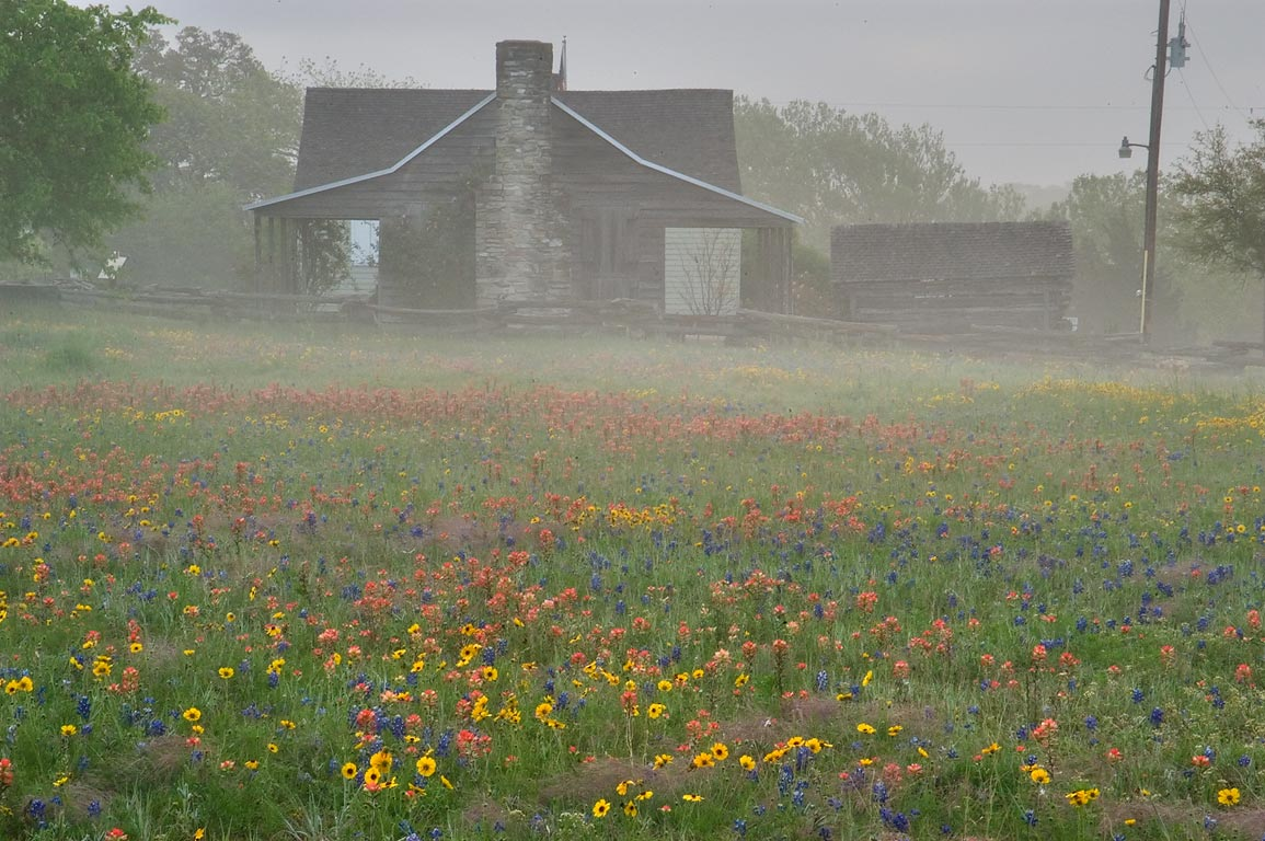 Log cabin in Old Baylor Park at morning in mist. Independence, Texas