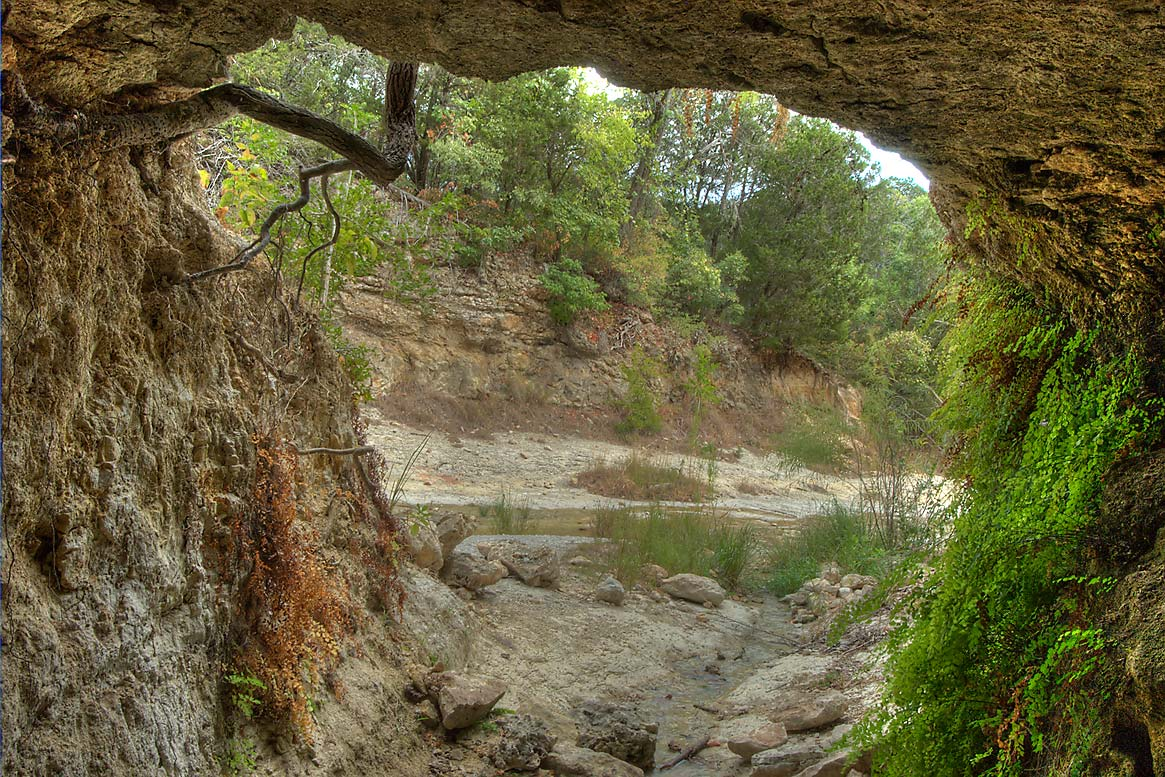 Limestone cave with a spring of a tributary of...Hollow Lake. Belton-Killeen, Texas