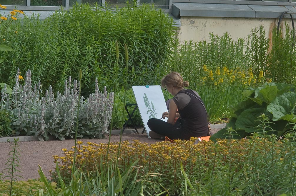 Student drawing sage in Botanic Gardens of...Institute. St.Petersburg, Russia