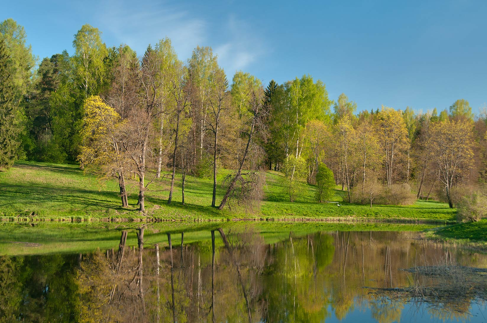 Viskontiev Pond of Slavyanka River in Pavlovsk Park, suburb of St.Petersburg. Russia